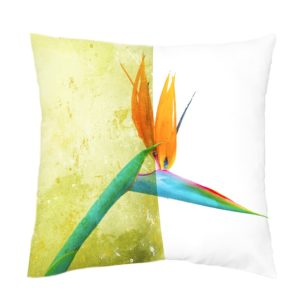 Strelitzia Scatter cushion