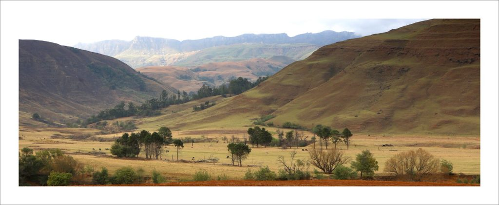 Earth tones of the Underberg IMG_0184