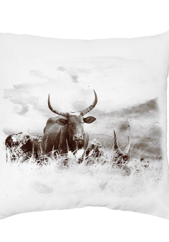 Nguni Cushions